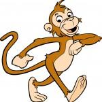 silly monkey copy