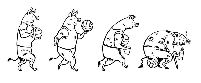 pig-shirt